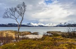 Sommarøya, Norwegen