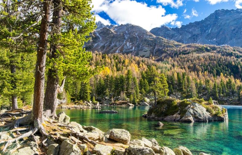 Lagh di Saoseo, Saoseo, See, Bergsee, Val di Campo, Poschiavo, Graubünden, Herbst,