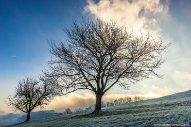 Nebel lichtet sich, Aargau