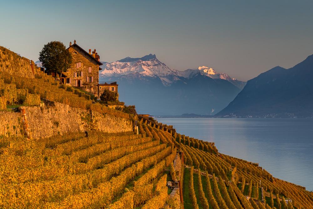 lauvaux Weinbaugebiet und UNESCO Weltnaturerbe.