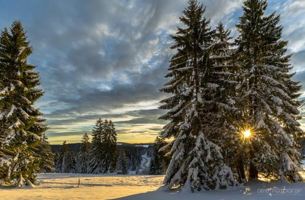 Schnee beim Etang de la Gruère bei Sonnenaufgang