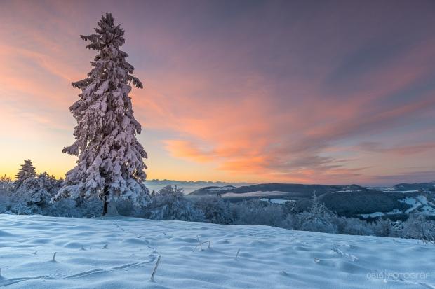 Passwang im Winter, Winter, Passwang, Jura, Sonnenaufgang, Morgen, Schnee,