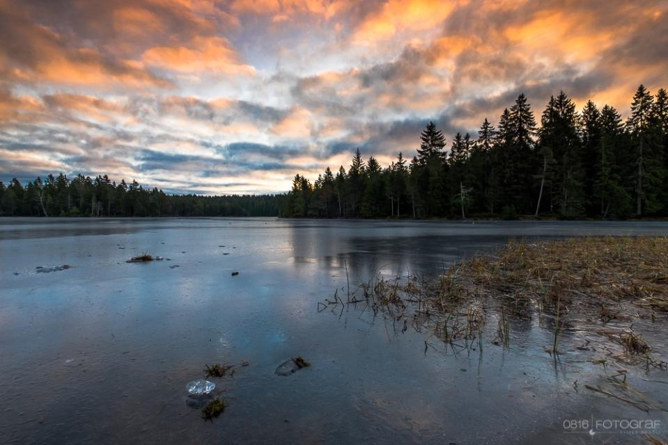 Winter, Gefrorener See, Sonnenaufgang am Etang de la Gruère, Moorsee, Jura, Moorsee