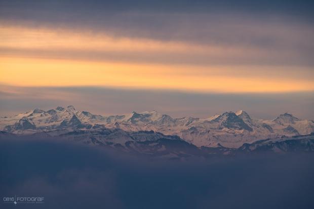 Blick auf die Berner Alpen von der Wasserflue im Aargau.