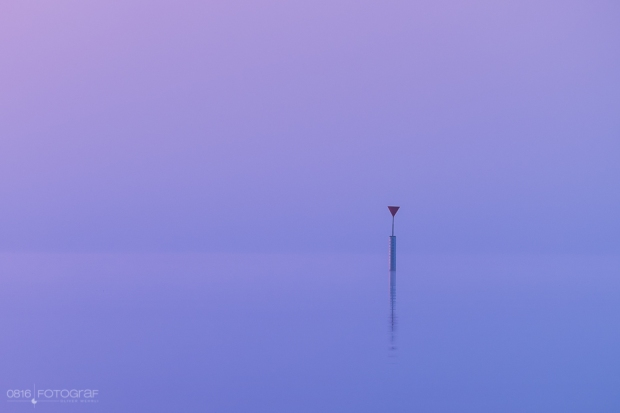Hallwilersee mit Morgennebel