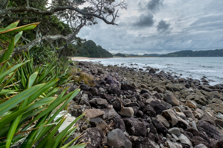 Hot Water Beach, Coromandel, Neuseeland, Strand, Beach,