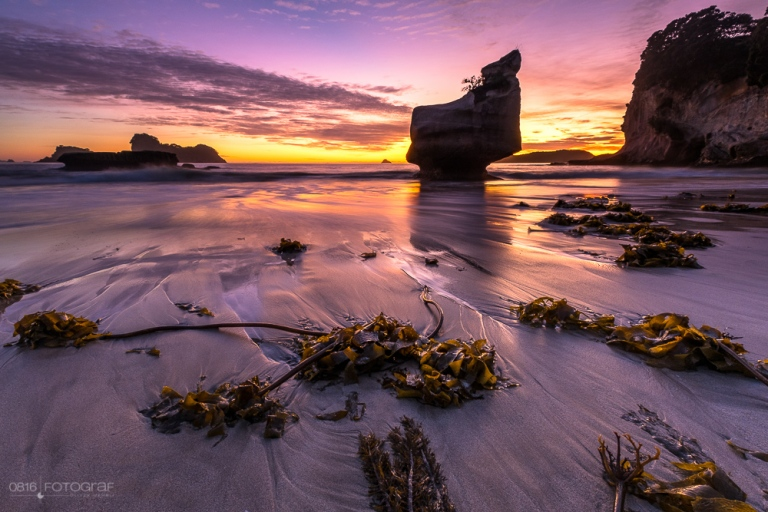 Coromandel, Cathedral Cove, Neuseeland, Sonnenaufgang, Beach, Seegras