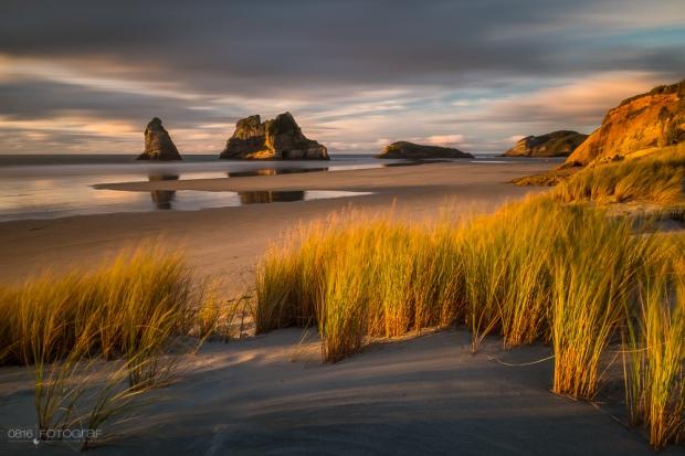 Wharariki, Neuseeland, New Zealand, Beach, Sandstrand,