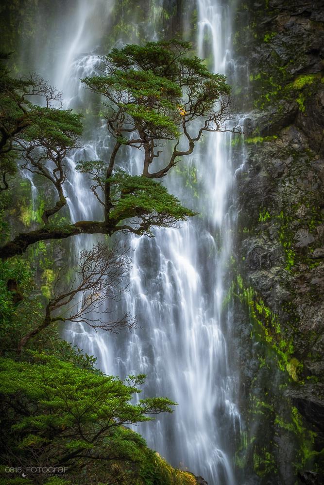 Arthurs Pass, Neuseeland, New Zealand