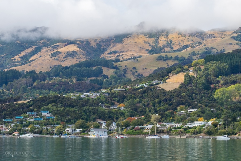 Akaroa, Canterbury, Halbinsel, Südinsel Neuseeland, meeresbucht,