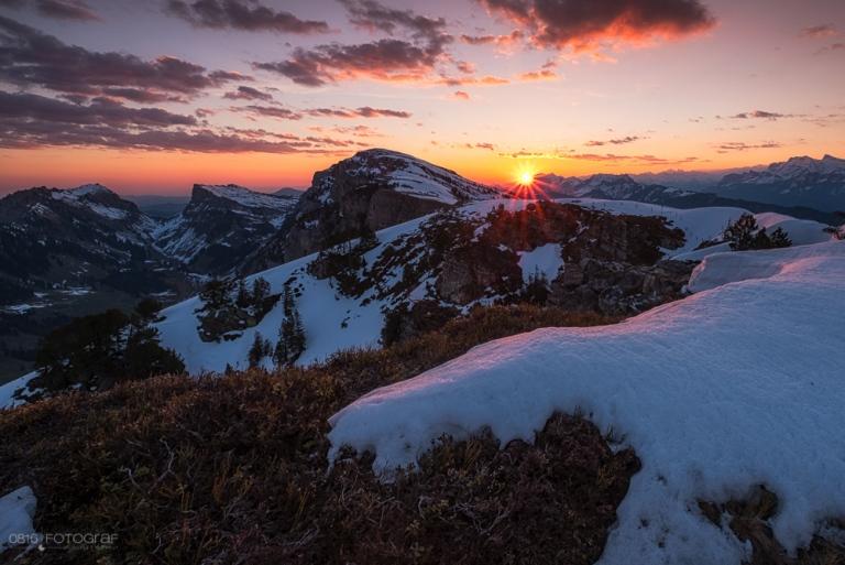 Niederhorn, Berner Oberland, Sonnenaufgang, Landschaft