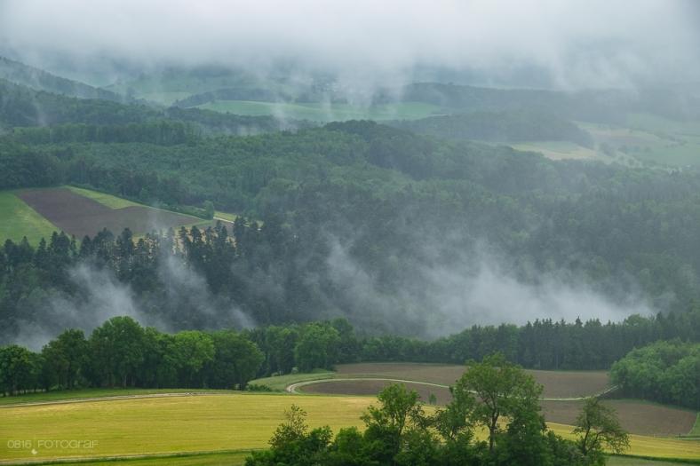 Regen und Nebel
