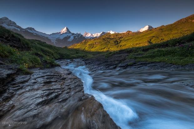 Bergbach, Berner Oberland, Schreckhorn, Wetterhorn, Finsteraarhorn, Bergspiegelung, Bachalpsee