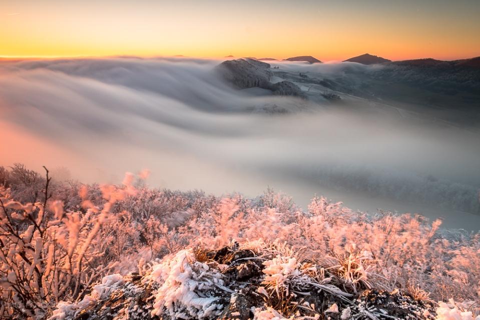 Jura Südfuss, Nebelwelle, Nebel, Abend, Sonnenuntergang, Gisliflue, Aargau, Jura, Schweizer Jura, Swiss Jura, fog, fogwave, fujifilm, fuji xpro2, gitzo, Sonnenuntergang, sunset