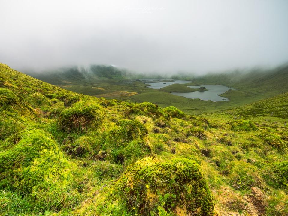 Vulkan, Corvo, Azoren, Inseln, Atlantikinsel, Portugal, Landschaft, Landschaftsfotografie, Nebel, Vulkankrater,