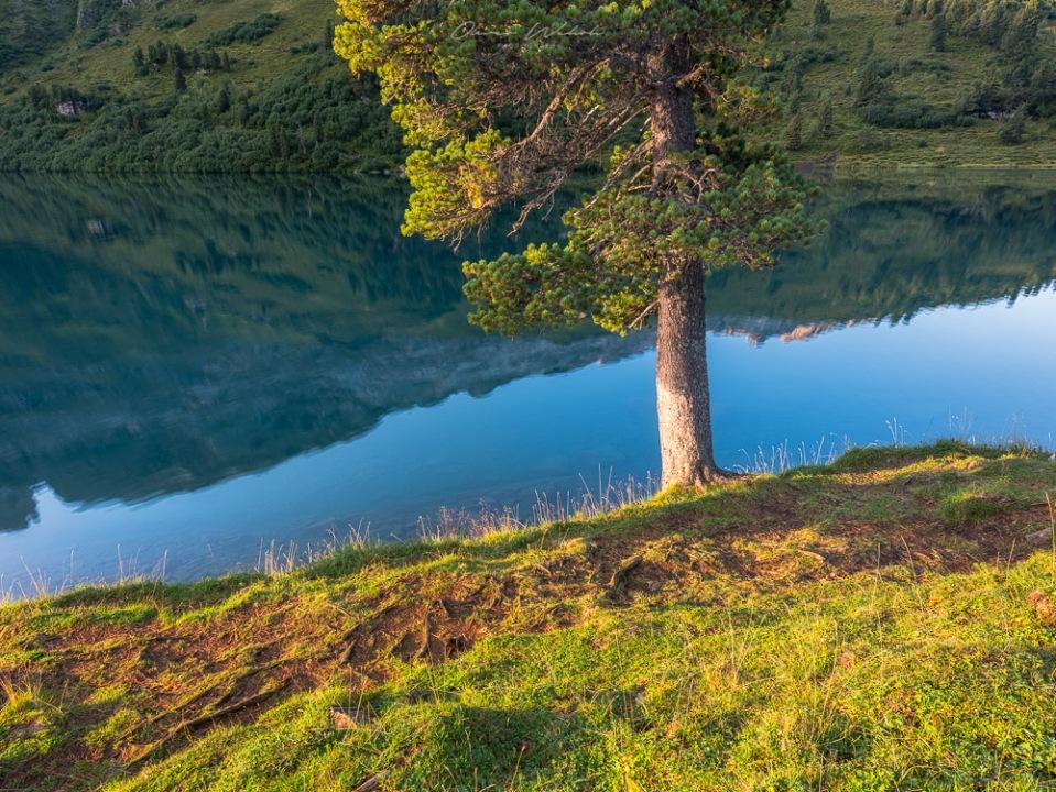 Sonnenaufgang, Engstlensee, Schweiz, Bergsee, Landschaftsfotografie, Gental, Berner Oberland, Bergsee Schweiz, Swiss mountain lake, landscape photography, landschaftsfotograf, fujifilm, gfx, mittelformat,