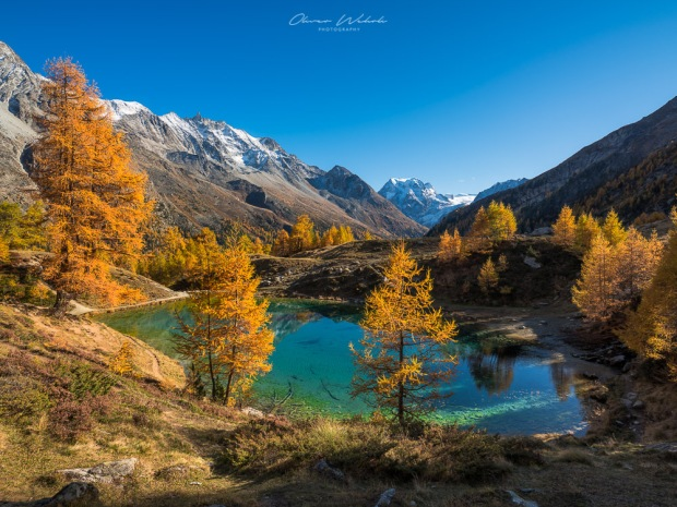 Lac Bleu, Val d'Hérens, Herbst am Lac Bleu, Lac Bleu Valais, Autumn Lac Bleu, Herbst, Herbstlicht, Autumn, Wallis, Valais, Landschaftsfoto Herbst, Herbstfoto, Landschaftsbilder Herbst, Fujifilm GFX Landscape, GFX Landscapes, Landscape Photography, Fall, Swiss Landscape, Schweizer Landschaftsfotografie, Landschaftsfotografie Schweiz, Herbstfoto Schweiz, Landschaftsfotografie, Landschaftsfotograf Schweiz, Landschaftsbild Wallis Herbst, Indian Summer, Swiss Indian Summer, Swiss Landscapes