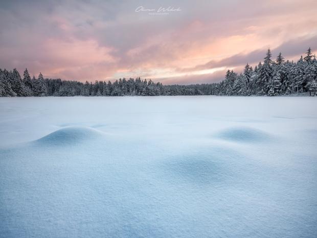 Landschaft, Winter, Winterlandschaft, Etang de la Gruère, Winter, Winterlandschaft, Jura, Landschaftsfoto, Landschaftsfotograf, GFX Landscape,