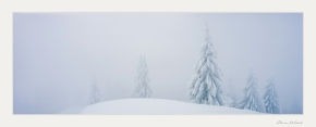 Schweiz, panoramabild, analog panorama, linhof 6x17, panoramafotografie, winterlandschaft, emmental, schweizer landschaftsfotografie, fine art fotografie, fine art winterlandschaft,